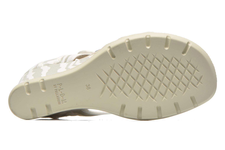 Sandales et nu-pieds P-L-D-M By Palladium Starlet Print Gris vue haut