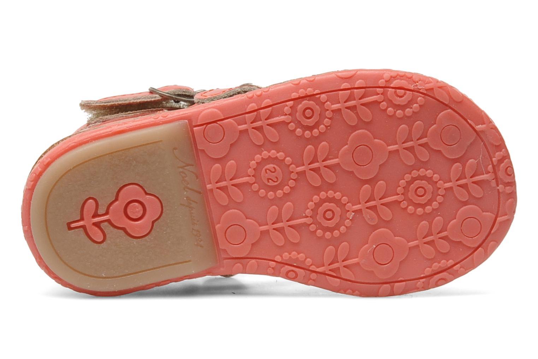 Sandalen Noël Mini Seul Roze boven