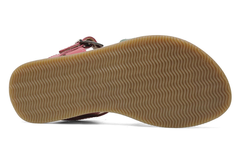 Sandales et nu-pieds Bopy FABIOLA Multicolore vue haut