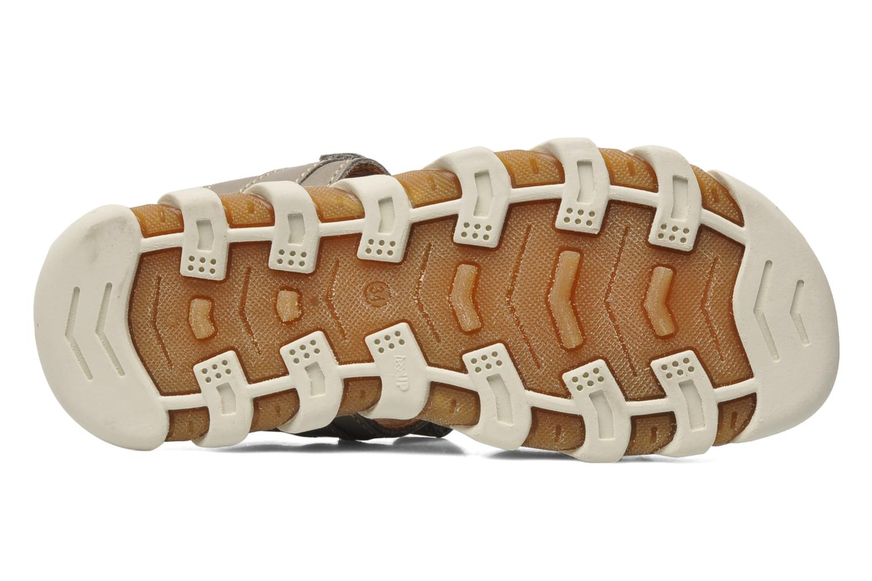 Sandales et nu-pieds Bisgaard Vyna Gris vue haut