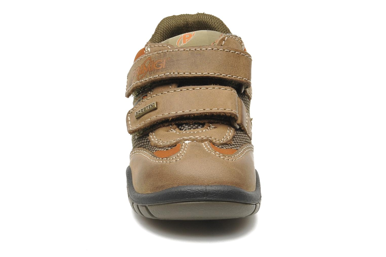 Baskets Primigi Abel Marron vue portées chaussures