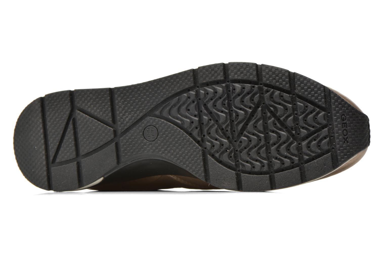 Sneakers Geox D SHAHIRA A D44N1A Bronze och Guld bild från ovan