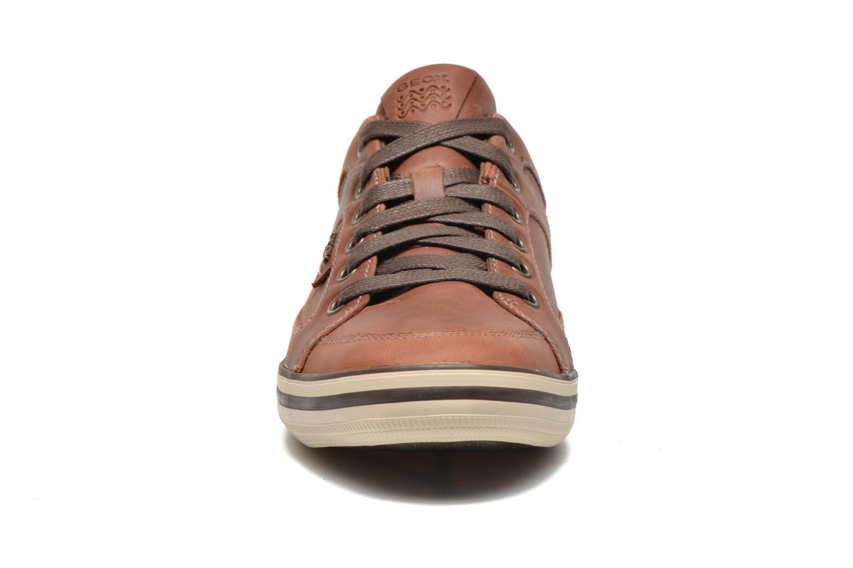 Baskets Geox U BOX D U44R3D Marron vue portées chaussures