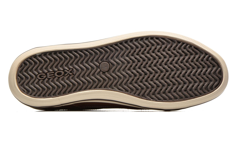 Sneakers Geox U BOX D U44R3D Bruin boven