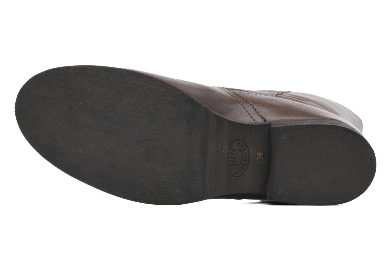 Stiefeletten & Boots Steve Madden Artic braun ansicht von oben