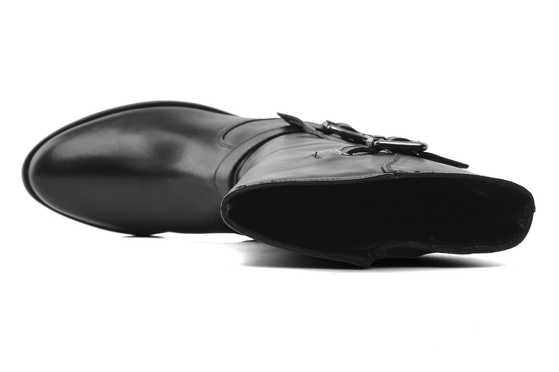 Fangie Noir