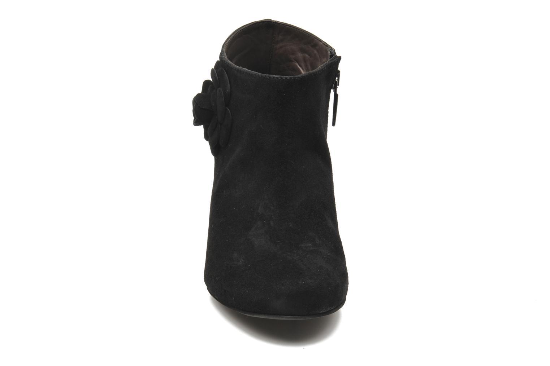 Bottines et boots Perlato Paddy Noir vue portées chaussures