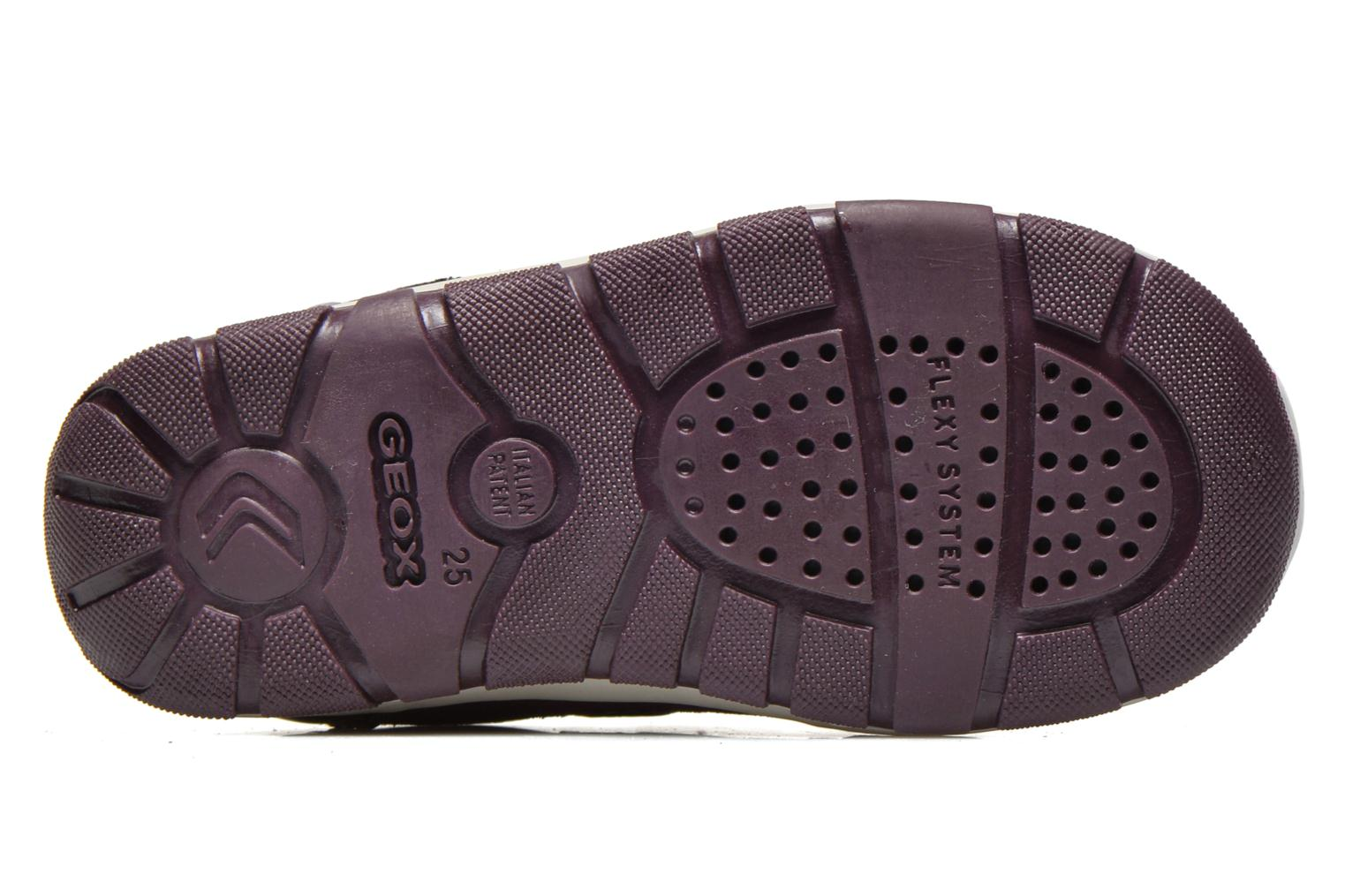 Trainers Geox B SHAAX A - 2 Purple view from above