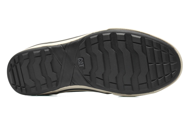 Sneaker Caterpillar Esteem canvas schwarz ansicht von oben