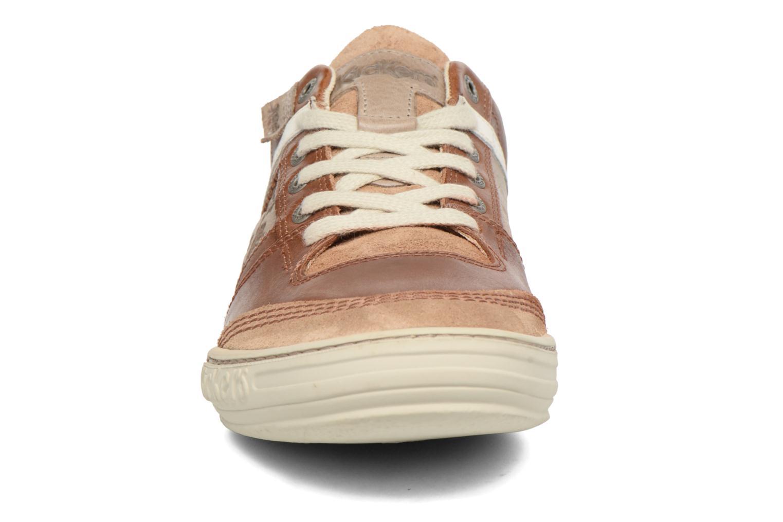 Sneakers Kickers Jexplore Brun se skoene på