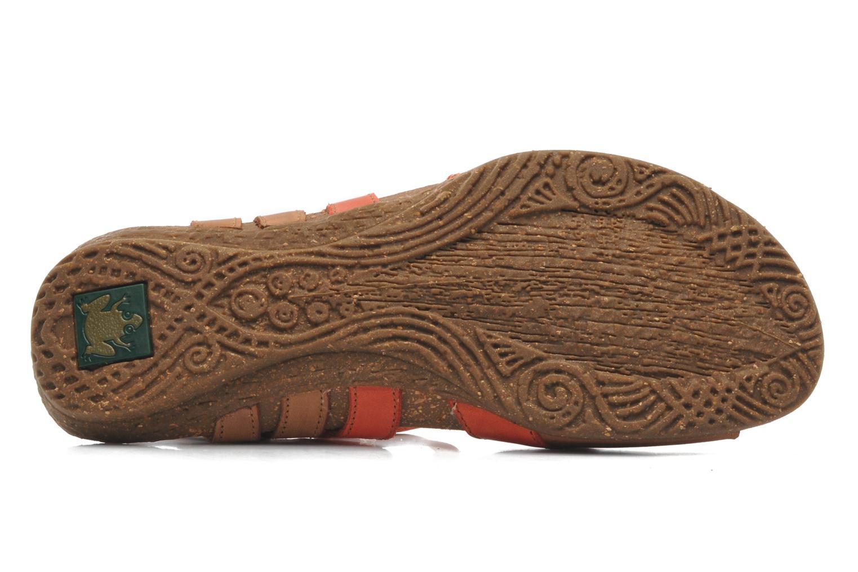 Sandales et nu-pieds El Naturalista Wakataua N448 Multicolore vue haut