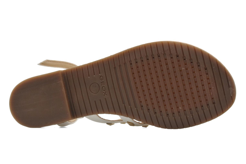 Sandalen Geox D JOLANDA E D5275E Wit boven