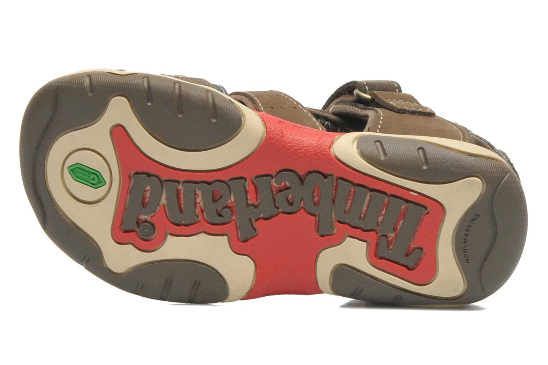 Sandales et nu-pieds Timberland PRKHPPREKL/FFSHMNGRG Marron vue haut
