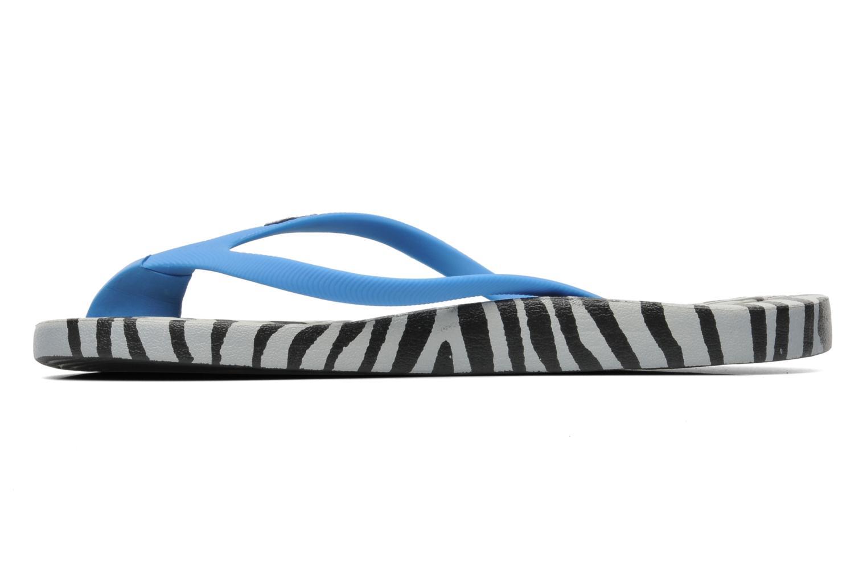 Prints W zebra