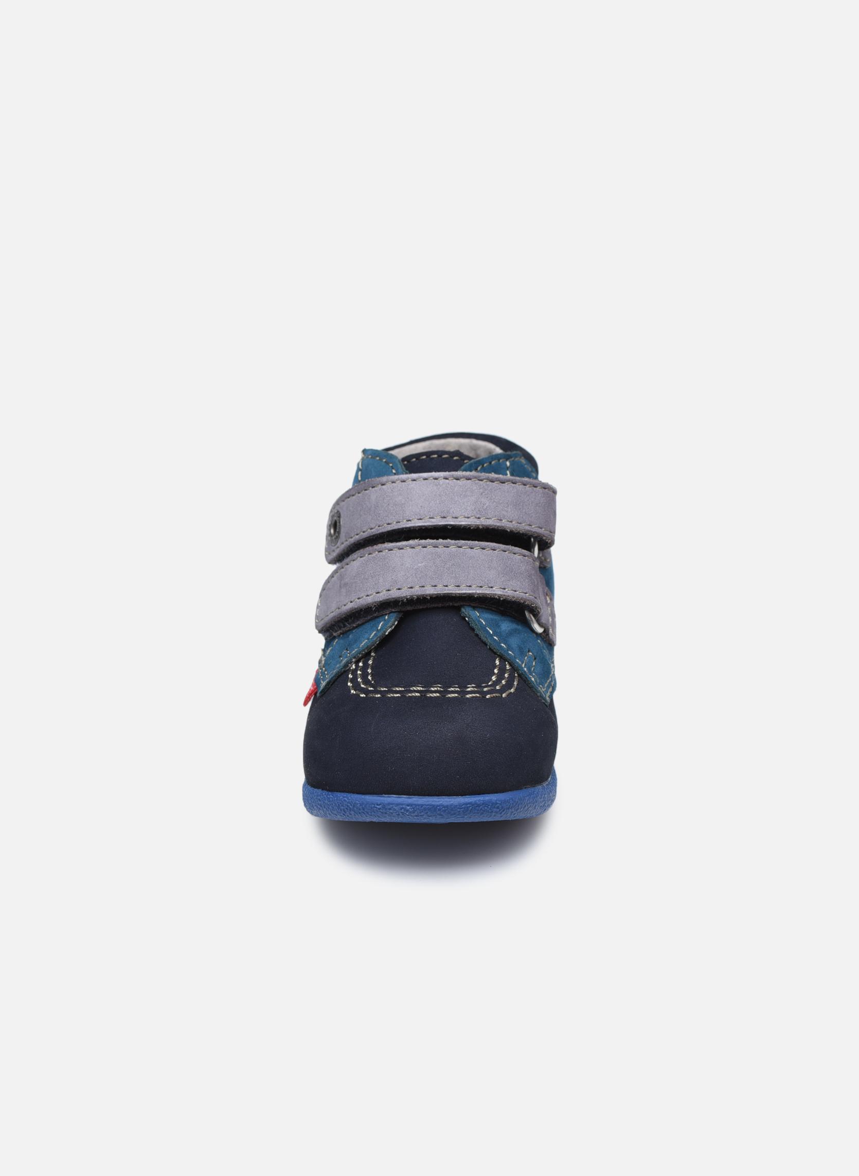 Chaussures à scratch Kickers Babyscratch Bleu vue portées chaussures