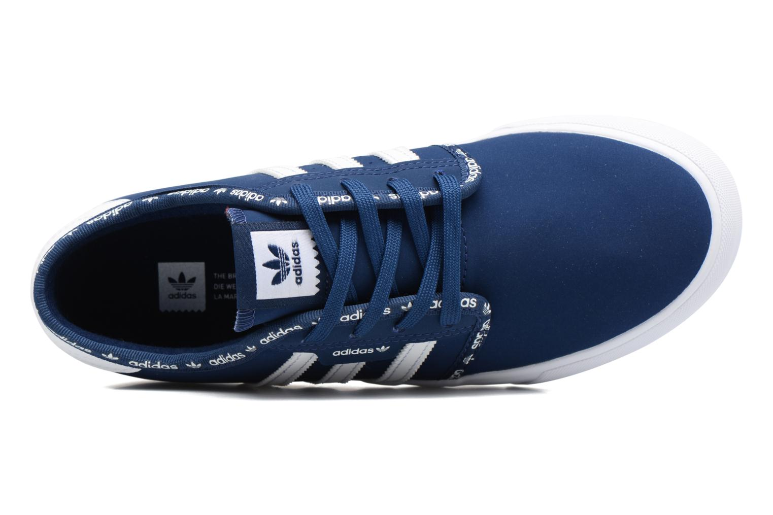 Trainers Adidas Originals Seeley J Blue view from the left