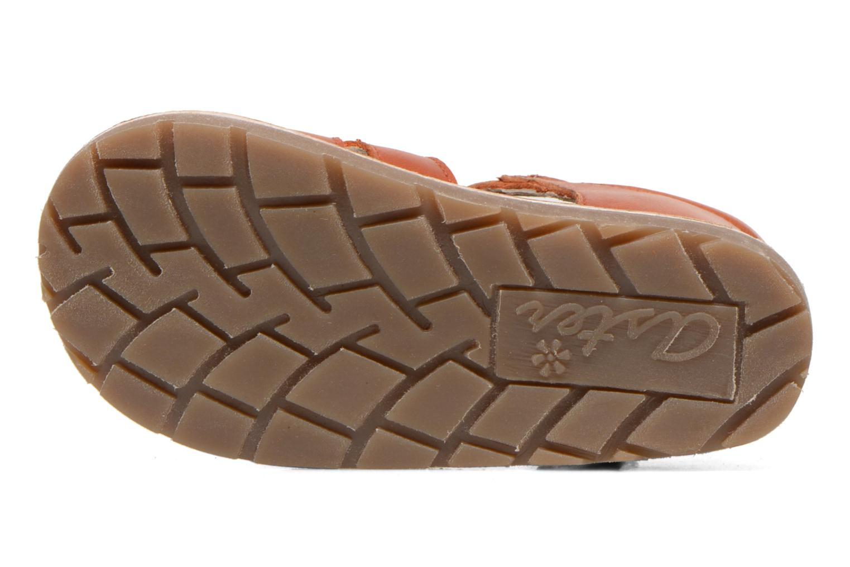 Sandales et nu-pieds Aster Ely Orange vue haut