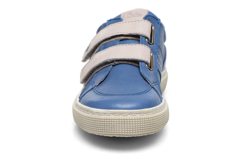 Chaussures à scratch Aster Caleb Bleu vue portées chaussures
