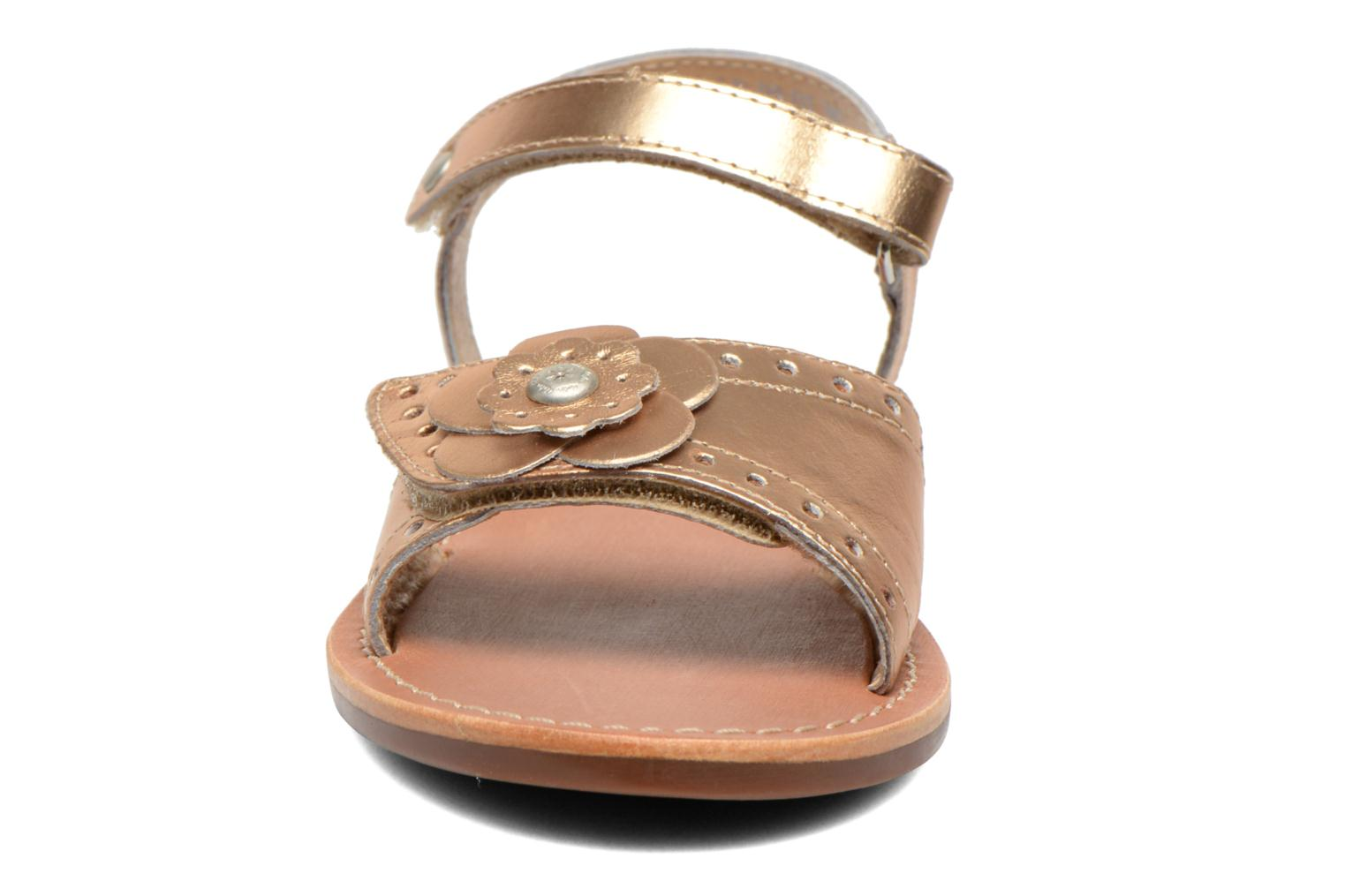Sandals Aster Verdiane Bronze and Gold model view