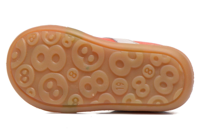 Duncan Orange Corail