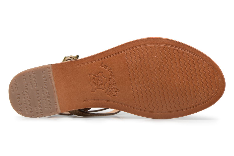 Sandali e scarpe aperte Les Tropéziennes par M Belarbi Baie Oro e bronzo immagine dall'alto