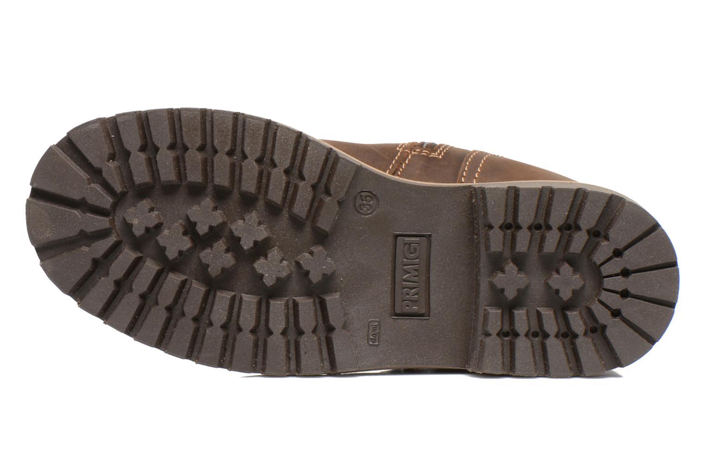 Støvler & gummistøvler Primigi Beeats Brun se foroven