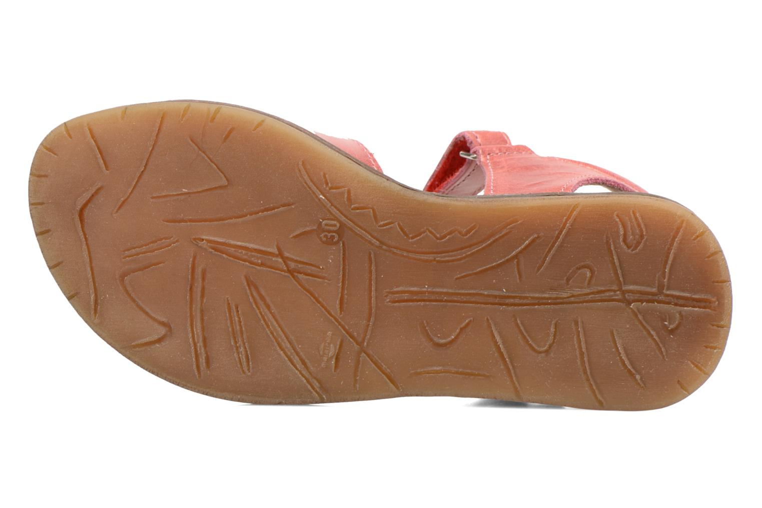 Sandals Bopy Ecolor Pink view from above