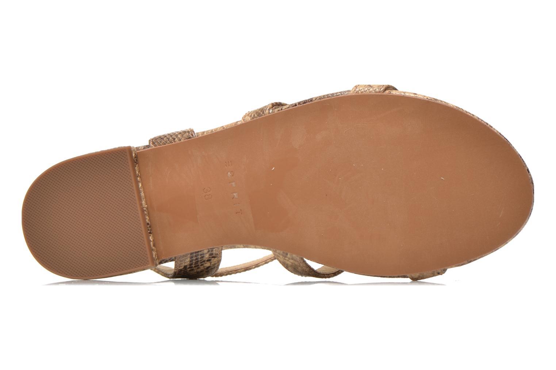 Sandales et nu-pieds Esprit Aely Sandal Beige vue haut