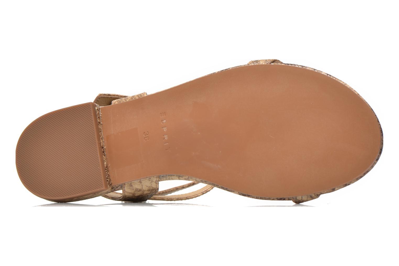 Sandales et nu-pieds Esprit Aely Bis Sandal Beige vue haut