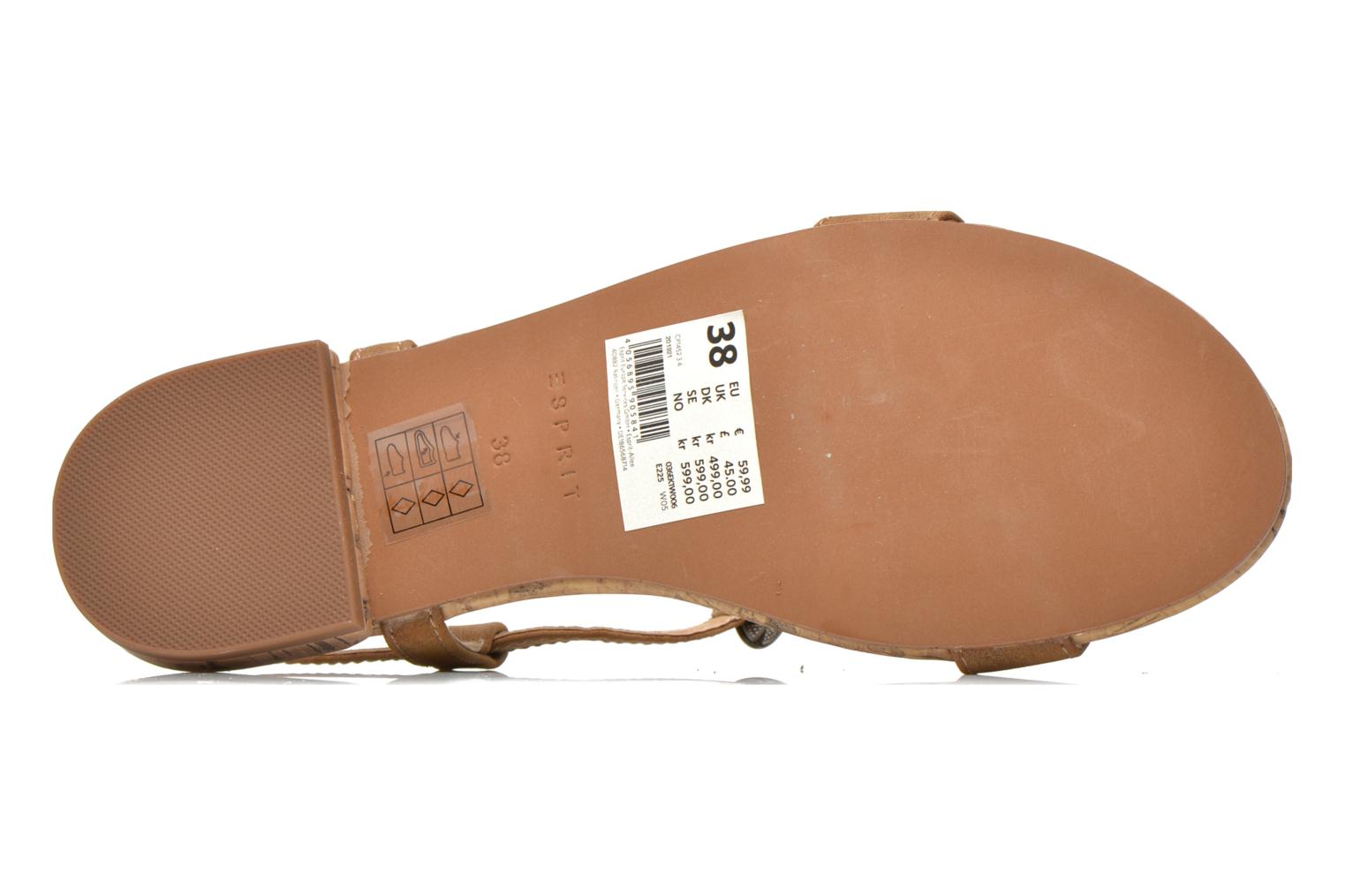 Sandals Esprit Aely Ter Sandal Brown view from above