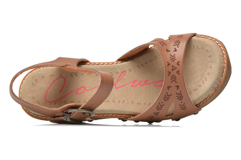 Sandales et nu-pieds Coolway Caleb Marron vue gauche
