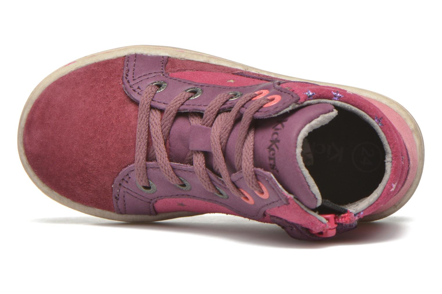 Lynx Bordeaux fuschia