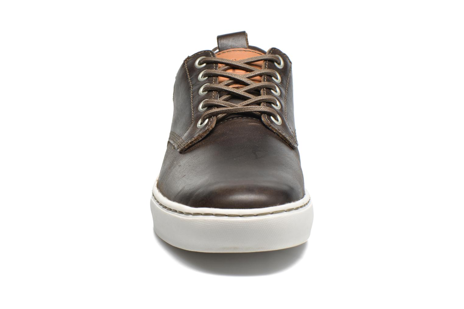 Trainers Timberland Adventure 2.0 Cupsole Lea Brown model view