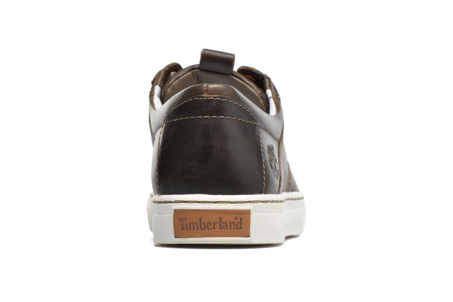 Trainers Timberland Adventure 2.0 Cupsole Lea Brown view from the right