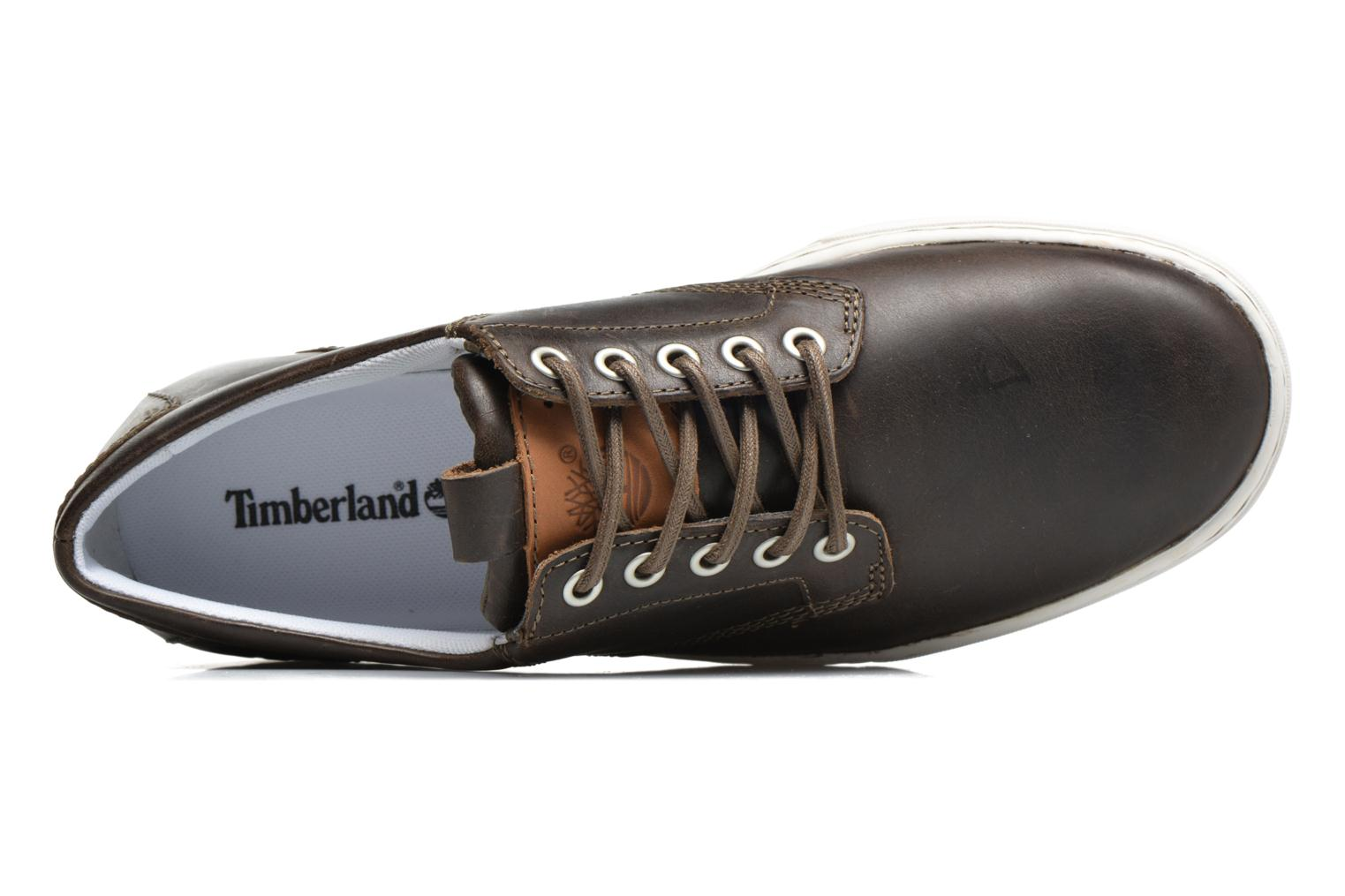 Trainers Timberland Adventure 2.0 Cupsole Lea Brown view from the left