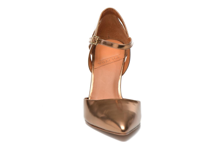 Dorothy Bronze