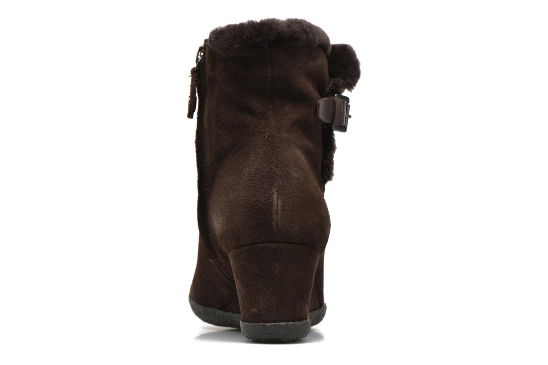 Bottines et boots Geox D AMELIA ST D D6479D Marron vue droite