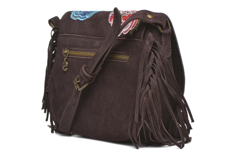 Handbags Desigual ANTEDOTS VARSOVIA Porté travers Brown view from the right