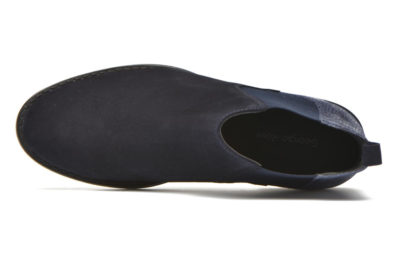 Celadon Cam marino + tejus marino
