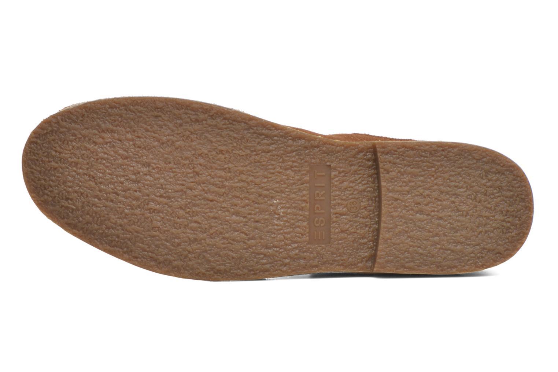 Koa Buckle Rust II