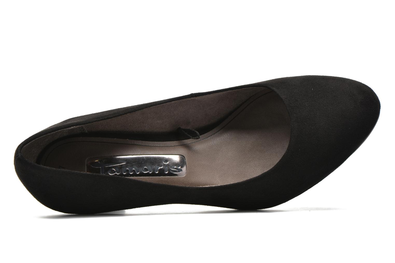 Cajanus Black
