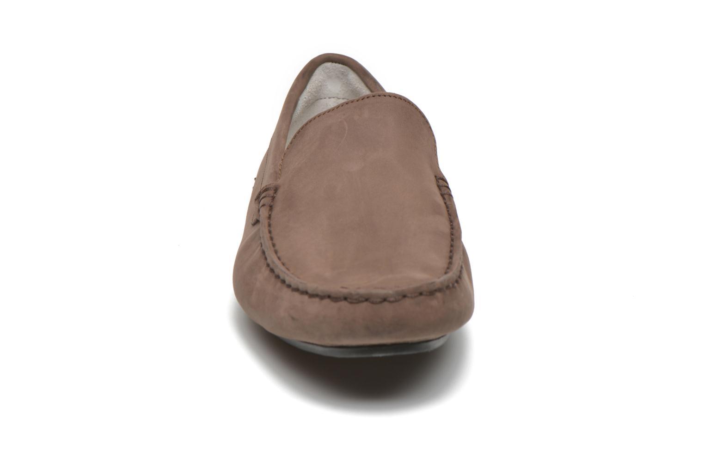 Loafers Lacoste Piloter 316 1 Brun bild av skorna på