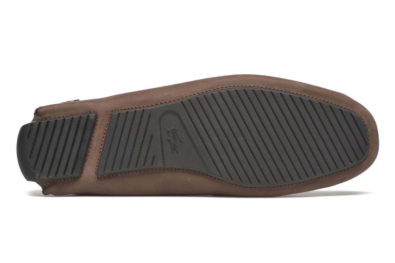 Loafers Lacoste Piloter 316 1 Brun bild från ovan