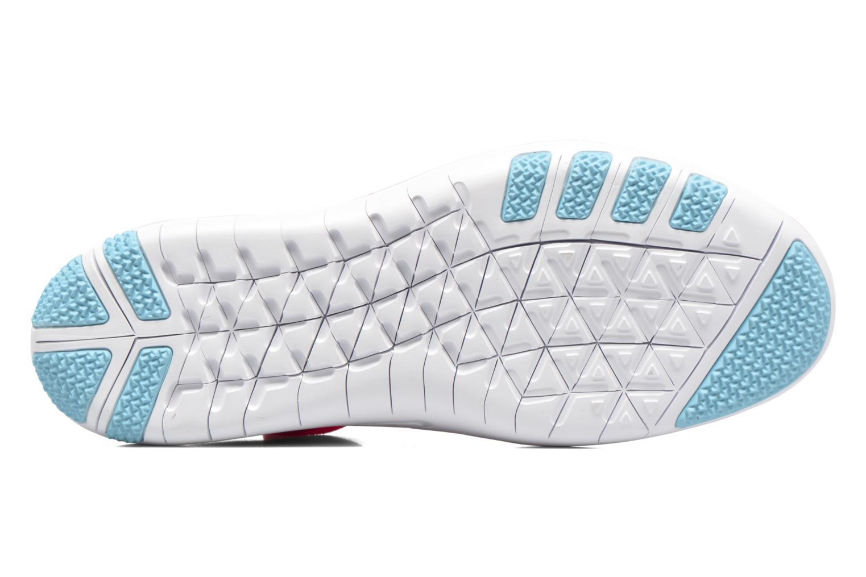 W Nike Free Tr Focus Flyknit Bright Melon polarized Blue  Glacier Blue