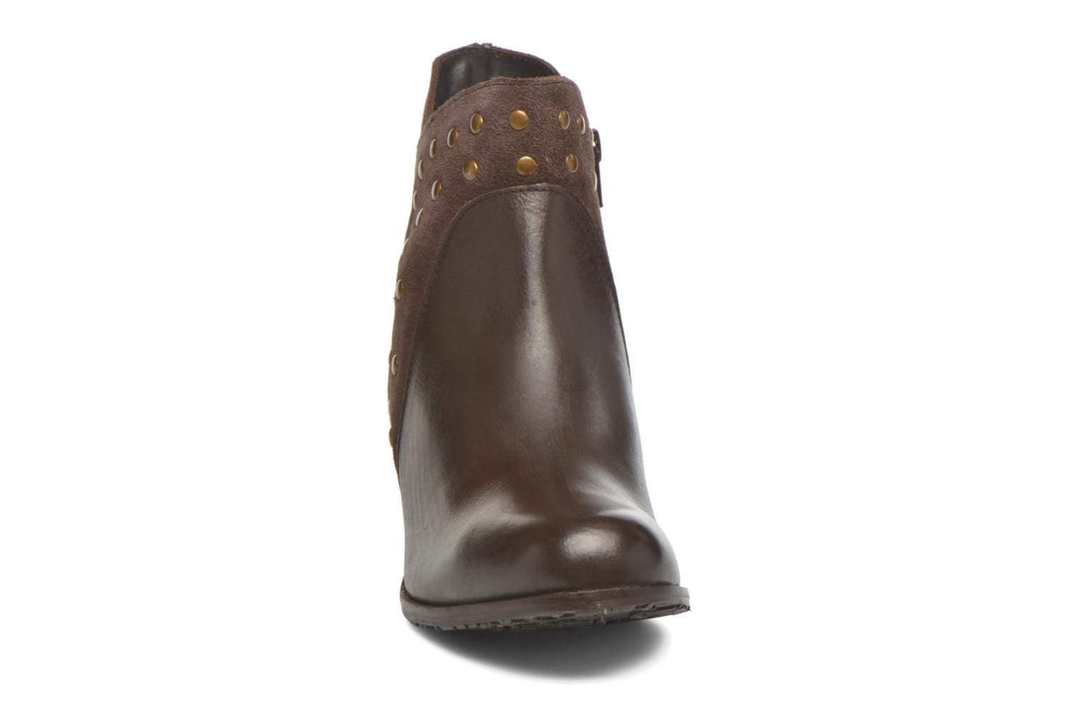 Ankle boots Hush Puppies KRIS Brown model view