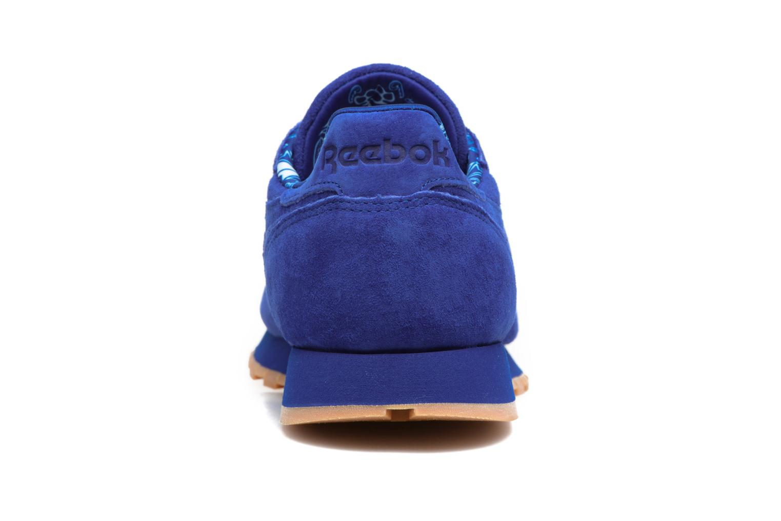 Trainers Reebok Cl Leather Tdc Blue view from the right