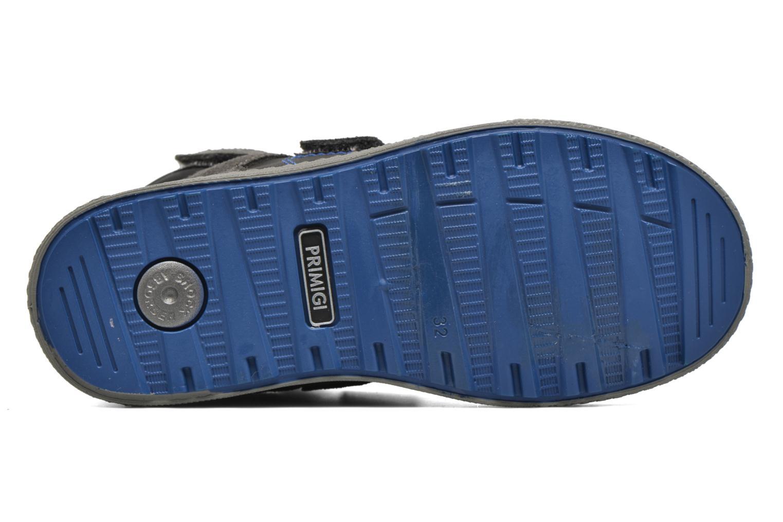Sneaker Primigi Otty-E grau ansicht von oben