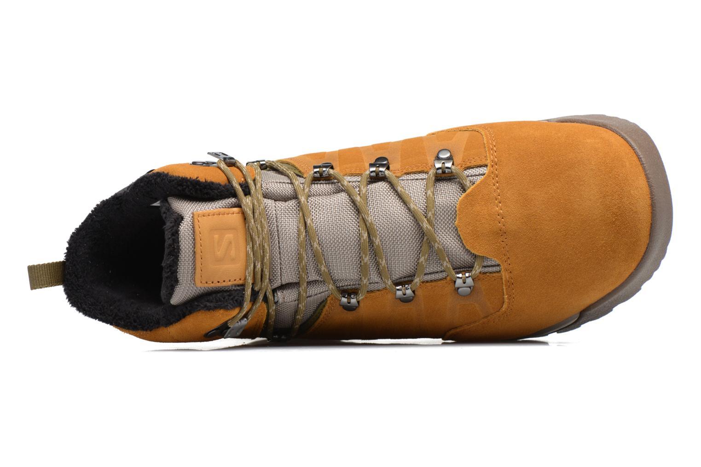 Zapatillas de deporte Salomon Utility TS CSWP Marrón vista lateral izquierda