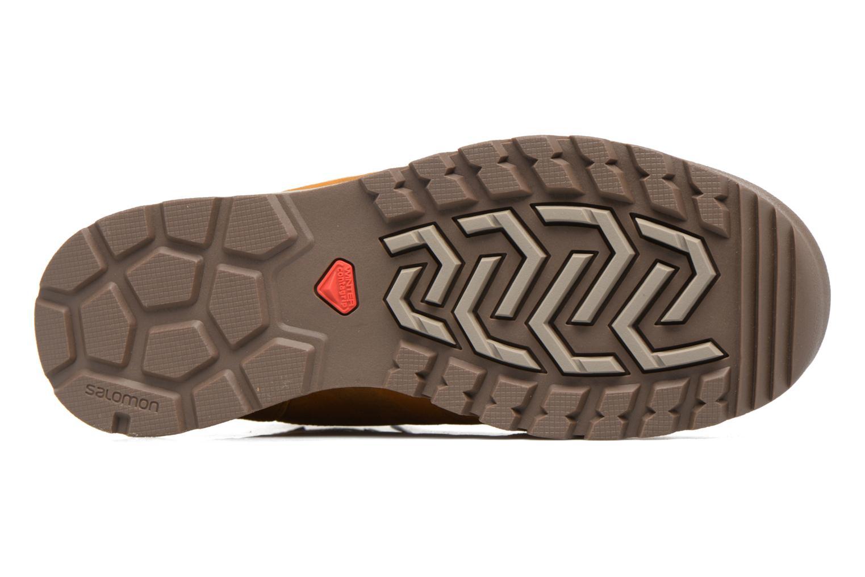 Zapatillas de deporte Salomon Utility TS CSWP Marrón vista de arriba