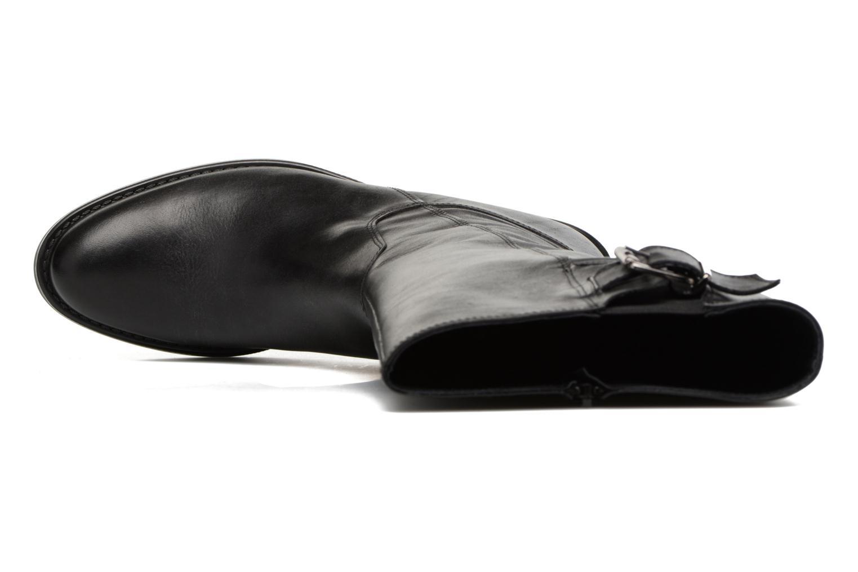 Dolan 294  Noir